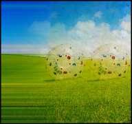 Animated GIF